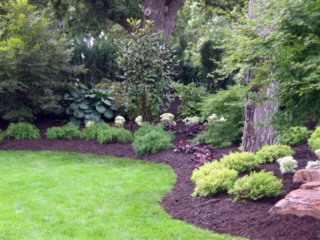 Curving landscape design