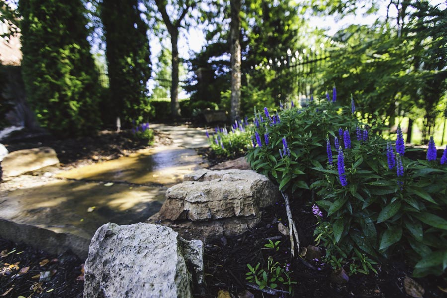 Natural Pathway
