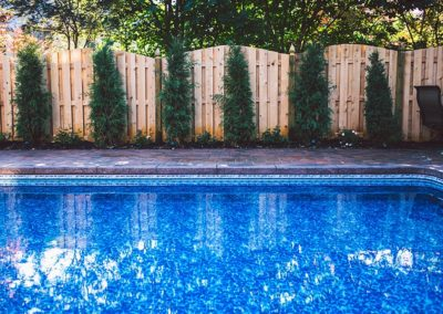 privacy screen and fence behind pool